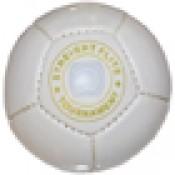 Arena Balls (Beach, Snow, Indoor Polo)